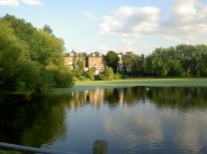 (parco Hampstead_villa000